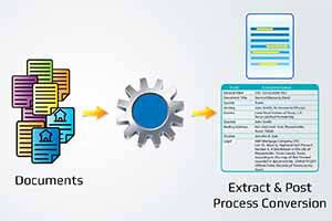 Data Extraction and Processing